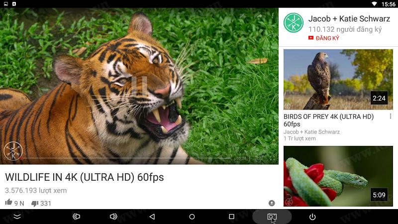 youtube-full-hd-tren-android-box
