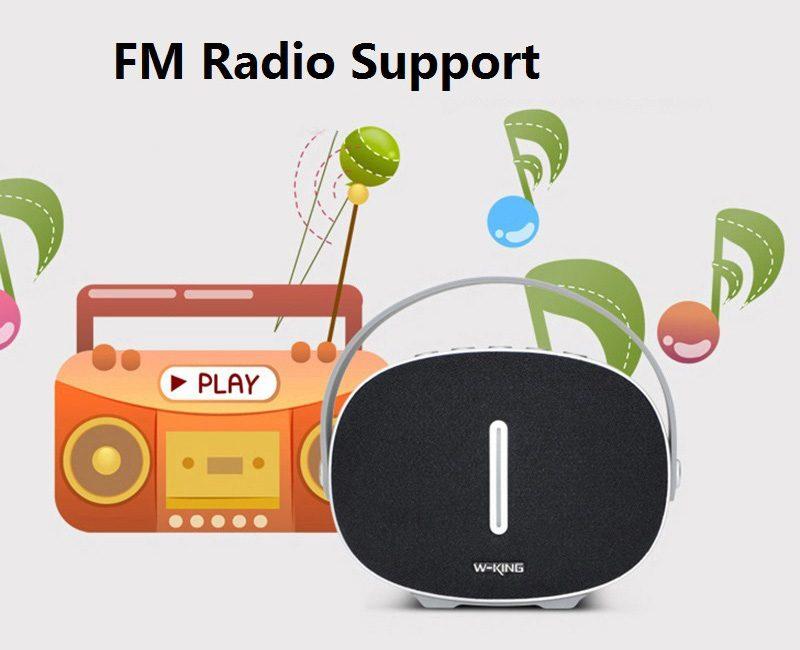 Loa Bluetooth W-King T6 Chính Hãng | Âm Thanh Hay - Chất Lượng Tốt 09