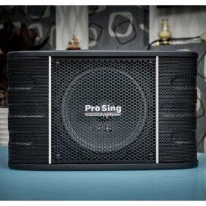 Loa Karaoke ProSing PS 1688 01