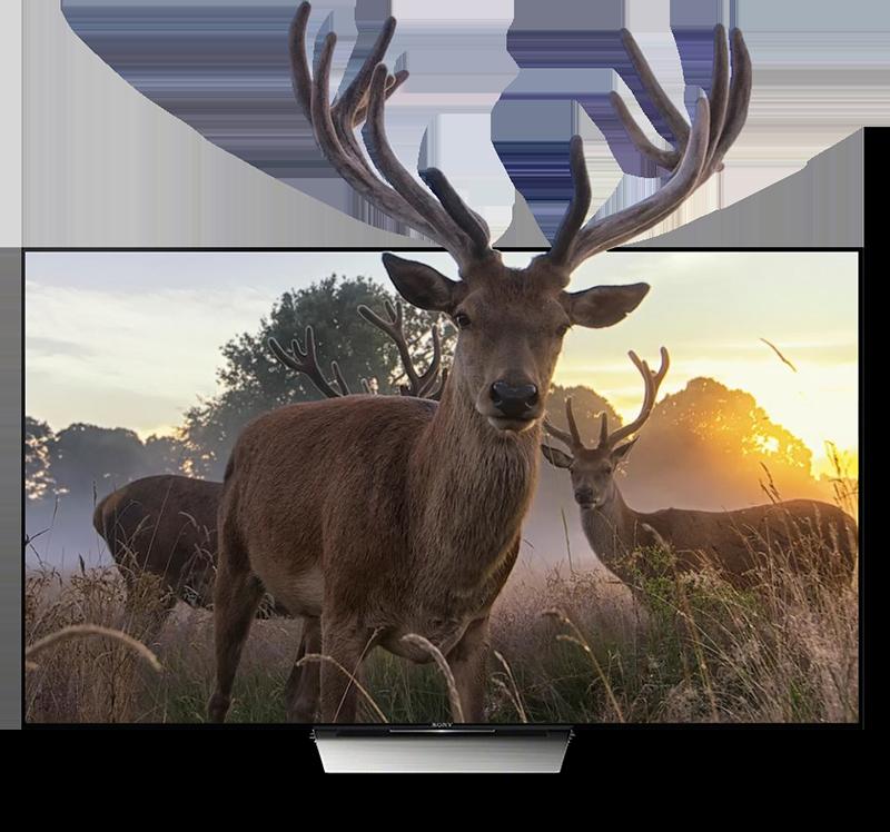 zidoo x9s chính hãng android 6.0 tv box chip realtek rtd1295, hỗ trợ 4k hdr - phim 3d
