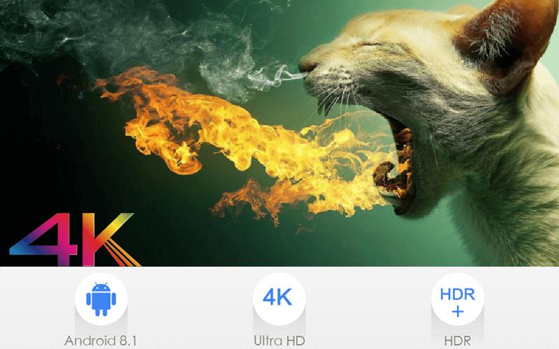 enybox x96 max 4gb/32gb android 8.1 tv box amlogic s905x2- hình 12