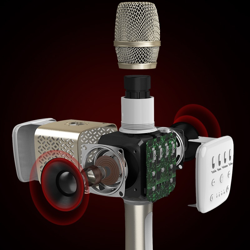 Tosing V2 - Micro Karaoke Bluetooth Cao Cấp 06