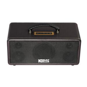 loa karaoke xach tay acnos ks360ms quai xách