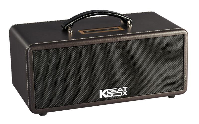 loa karaoke xach tay acnos ks360ms vỏ da màu nâu
