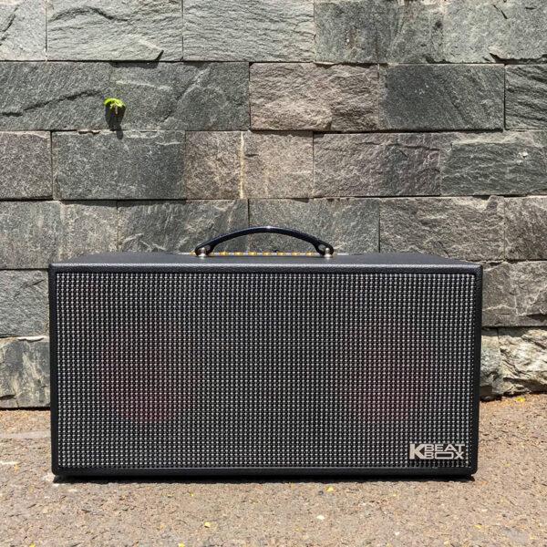 mat-truoc-loa-karaoke-acnos-ksnet-450