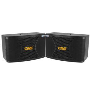 loa karaoke cavs cx10 bass 25cm