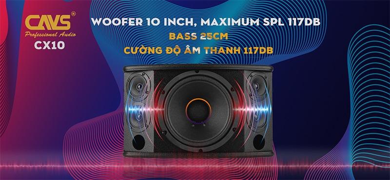loa karaoke cavs cx10 bass 25cm cuong do am thanh lon
