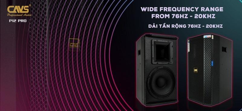 loa karaoke full cavs p12 pro hình 1