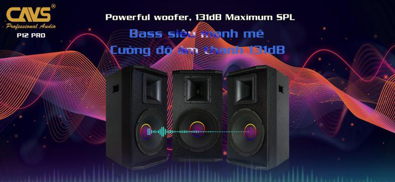loa karaoke full cavs p12 pro hình 3