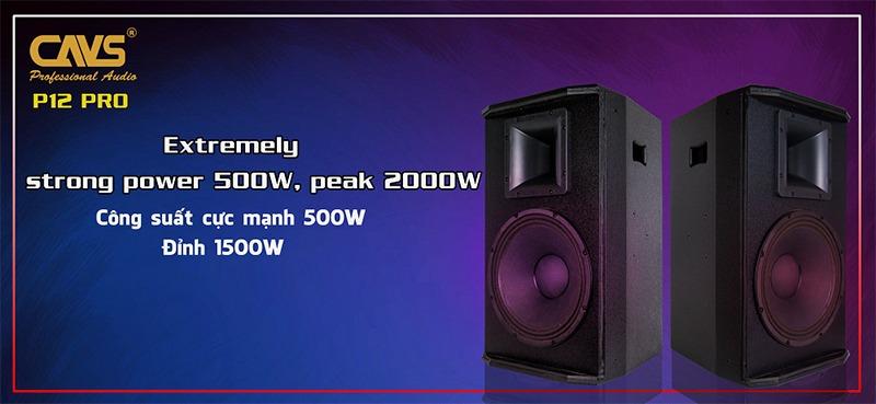 loa karaoke full cavs p12 pro hình 4
