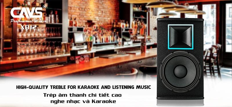 loa karaoke full cavs xb12 plus hình 5