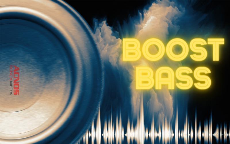 loa karaoke xách tay acnos cs446 loa boot bass