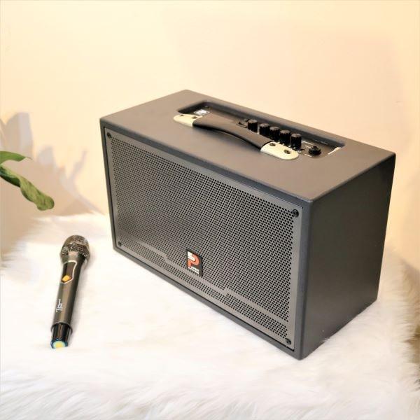 loa karaoke xách tay prosing w-silver-e công suất lớn