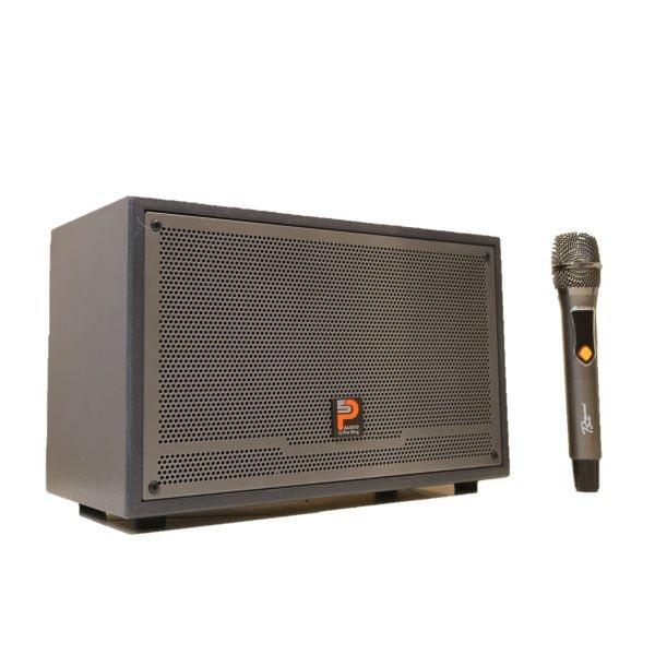 loa karaoke xách tay prosing w-silver-e kèm micro
