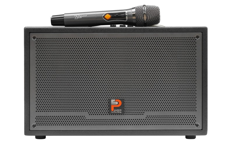 loa karaoke xách tay prosing w-silver-e thiết kế hiện đại